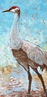 Sandhill Cranes IV Fine-Art Print