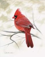 Beauty In Red Fine-Art Print