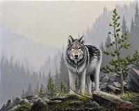 A Wild Domain Fine-Art Print