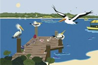 Where The Pelicans Gather Fine-Art Print