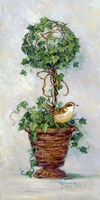 Ivy Topiary IV Fine-Art Print
