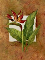 Tropical Squares 4 Fine-Art Print