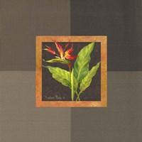 Tropical Treasures II Fine-Art Print