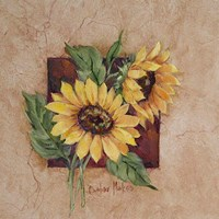 Sunflower Square Fine-Art Print