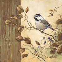 Chickadee Square II Fine-Art Print