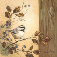 Chickadee Square I Fine-Art Print