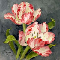 Pink Tulips Fine-Art Print