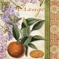 Summer Citrus II Fine-Art Print