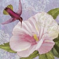 Humming Hibiscus II Fine-Art Print