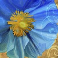 Poppy Blues II Fine-Art Print