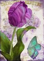 Parrot Tulips II Fine-Art Print