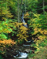 Moss Glen Falls, Granville Reservation State Park, Vermont Fine-Art Print