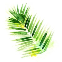Tropical Icons Palm Frond Fine-Art Print