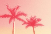 Palm Trees in Pink Fine-Art Print