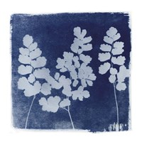 Flora Cyanotype II Fine-Art Print
