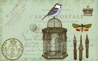 Carte De Visit Bird Fine-Art Print