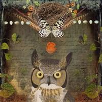 Deep Forest Owl Fine-Art Print