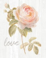 Garden Rose on Wood Love Fine-Art Print