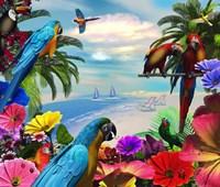 Macaw Island Fine-Art Print