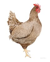 Life on the Farm Chicken Element III Fine-Art Print