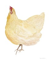 Life on the Farm Chicken Element II Fine-Art Print