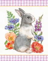 Sunny Bunny IV Checker Border Fine-Art Print