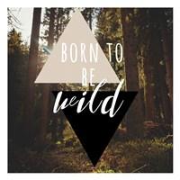 Born To Be Wild 38 Fine-Art Print