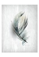 Feathered Dreams 2 Fine-Art Print
