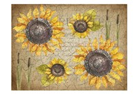Sunflower Day Fine-Art Print