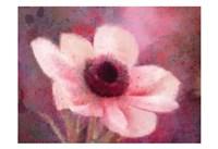 Blooming Pink Fine-Art Print