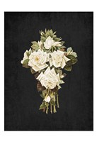 Roses on Black 3 Fine-Art Print