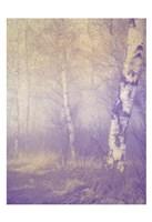 Mystic Forest Fine-Art Print