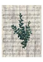 Musical Botanical 3 Fine-Art Print