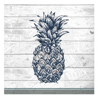 Country Pineapple 1 Fine-Art Print