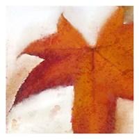 Splatter Leaves 2 Fine-Art Print