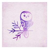Purple Pink Owl 2 Fine-Art Print