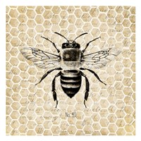 Honeycomb No 40 Fine-Art Print