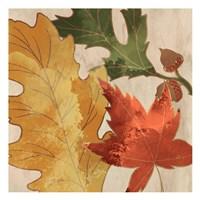 Fall Leaves Square 1 Fine-Art Print