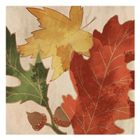 Fall Leaves Square 2 Fine-Art Print