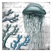 Under the Sea 1 Fine-Art Print