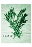 Rosemary Paper Scraps Fine-Art Print
