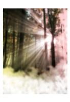 Sunset Haze Fine-Art Print