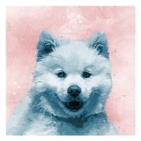 Husky Splat Fine-Art Print