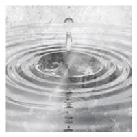 Silver Droplet Fine-Art Print