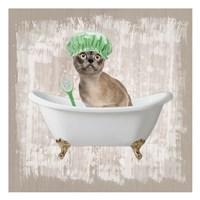 Kitty Baths 3 Fine-Art Print