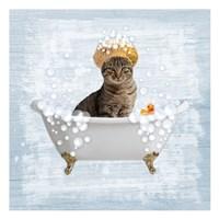 Fun Kitty Bath 2 Fine-Art Print