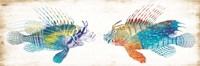 Fish Kiss Fine-Art Print