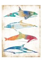 Colorful Sea Life Fine-Art Print
