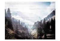 Bright Woods Fine-Art Print