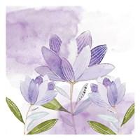 Purple Delight 1 Fine-Art Print